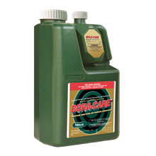 Picture of Bora-Care with Mold-Care (1 gal. bottle)