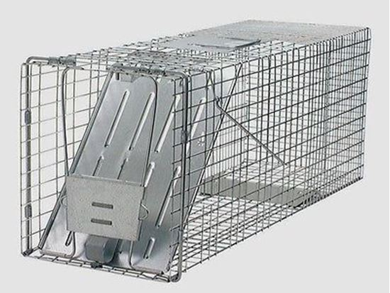 Picture of Havahart Trap #1077  (17x7x7)