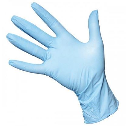 Picture of Gloves,Nitrile Disp Lg (100)