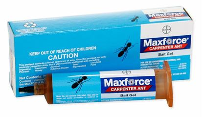 Picture of Maxforce Carpenter Ant Bait Gel (27 gm. reservoir)