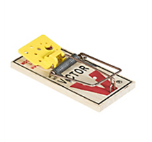 Picture of Victor M325 Mouse Trap (72 count)