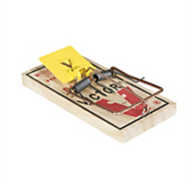 Picture of Victor M326 Rat Trap (12 count)