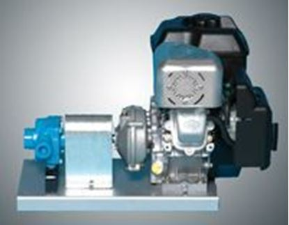 Picture of Hypro 6500C-R Roller Pump with Briggs & Stratton Standard Engine