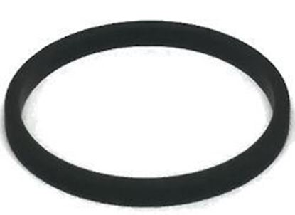 Picture of Hypro 1700-0065 Gasket for Low-Profile Strainer