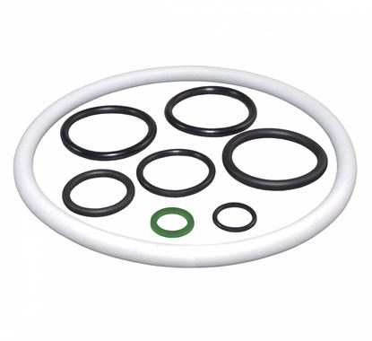 Picture of Birchmeier Gasket Set Pump and Tank Repair Kit