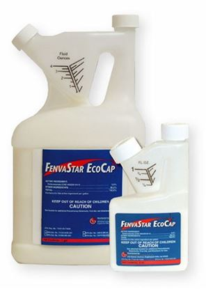 Picture of FenvaStar EcoCap