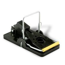 Picture of Snap-E Mouse Trap (6 x 24 count)