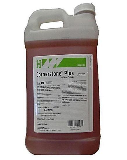 Picture of Cornerstone Plus