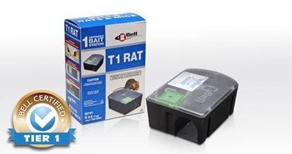 Picture of T1 Rat