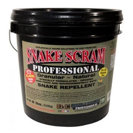 Picture of EPIC Snake Scram