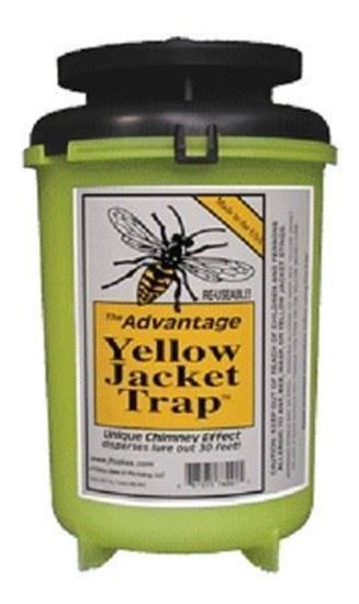 Picture of Advantage Yellow Jacket Trap