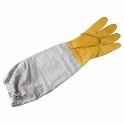 Picture of Bee Plastic & Canvas Gloves