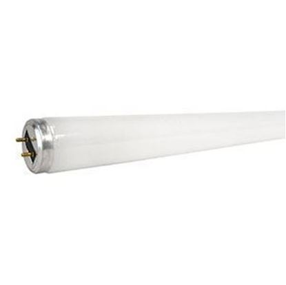 Picture of Gilbert F25/T8/BL350 Bulb - 25 watt, 18 in.
