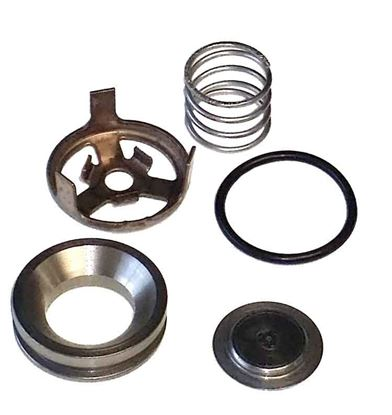 Picture of 5200 Series Piston Pump - Valve Kit