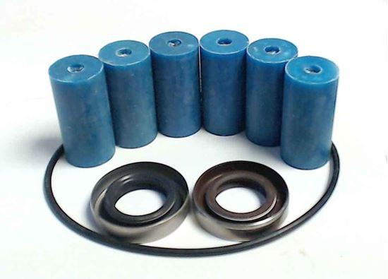 Picture of 1502 Series 6 Roller Pump - Repair Kit (Standard)