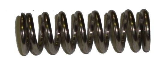Picture of B&G 34512 Robco QCG Valve Spring