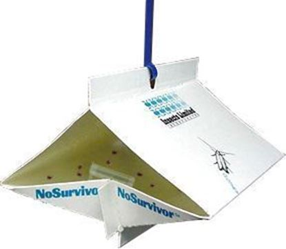 Picture of NoSurvivor Traps for Warehouse and Khapra Beetles (10 count)
