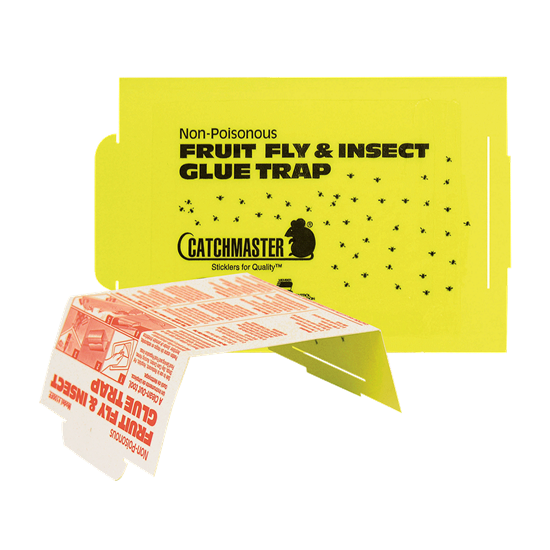 Picture of Catchmaster 100FF Fruit Fly Glue Board
