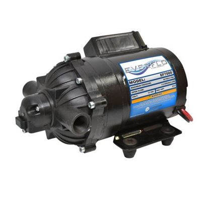 Picture of Everflo EF7000 Diaphragm Pump