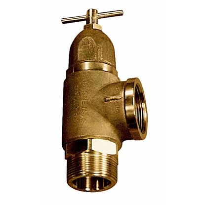 Picture of Spraying Systems AA110-1/1/4 Relief Valve